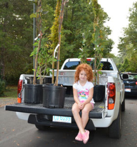 girl-and-trees-truck-bed