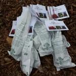 Seedling prep