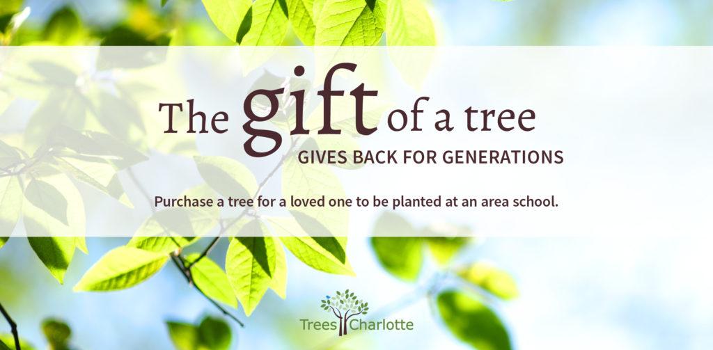 Gift A Tree Treescharlotte
