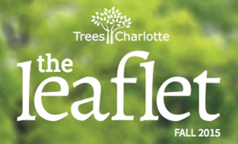 Charlotte Tree Canopy Conservation Trees Charlotte Nonprofit