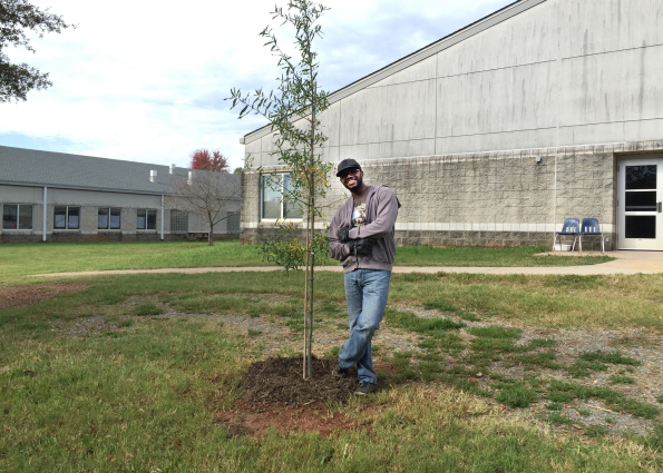 Plant a tree in Charlotte with TreesCharlotte