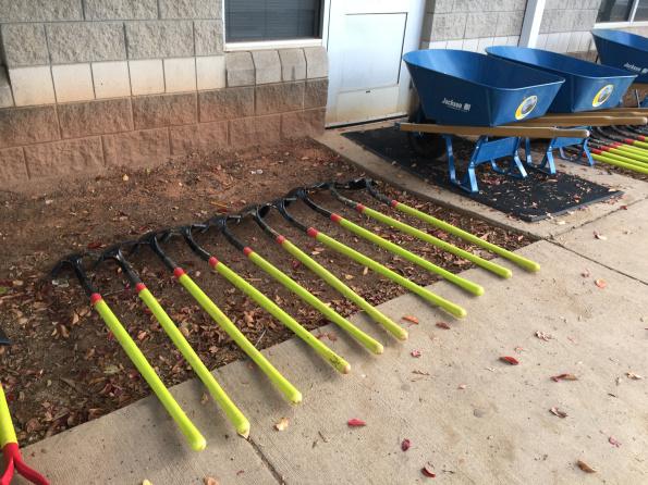 Planting with TreesCharlotte