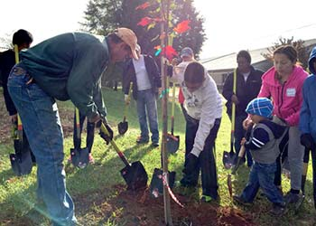 Planting demonstration with TreesCharlotte