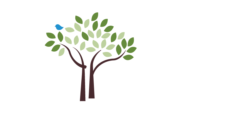 treescharlotte tree canopy conservation charlotte nc nonprofit
