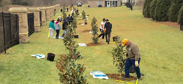 Stone Creek Ranch Planting Trees Charlotte Nonprofit